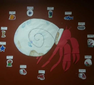 hermit crab-vocabulary (small)
